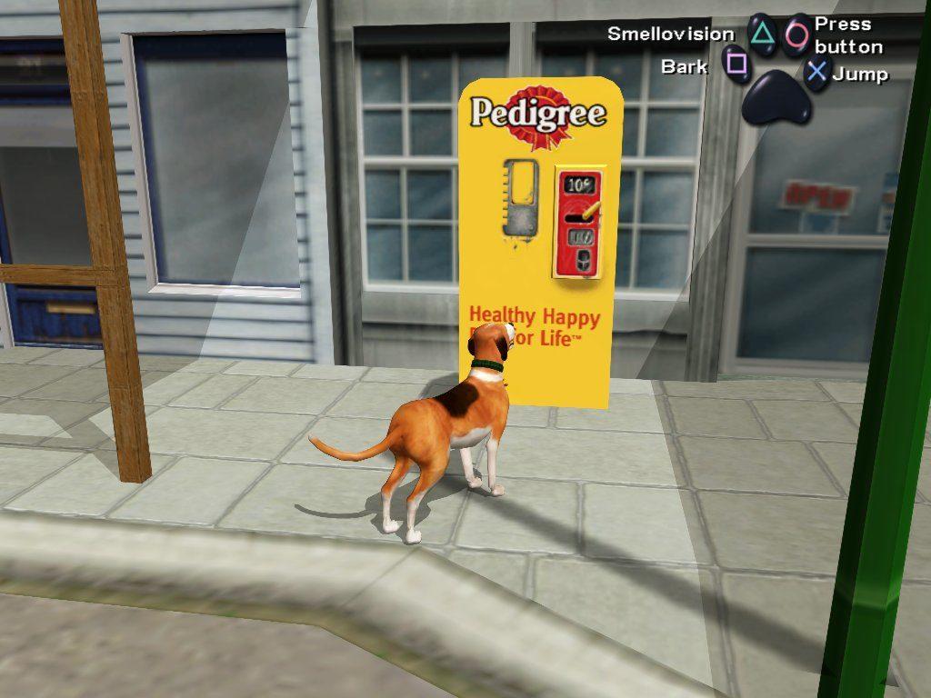 dogslife2